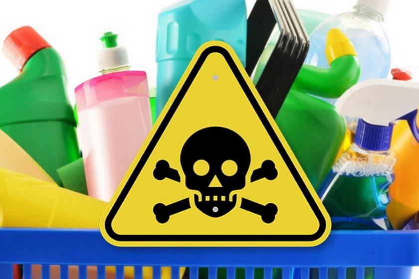 Почему ежедневное воздействие химикатов может снизить репродуктивную функцию наших внуков